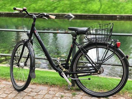 Wheel, Bike, Transport System, Spoke, Grass, Cycling