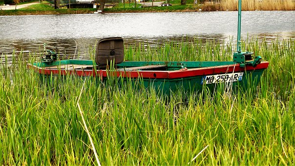Nature, Pond, Fishing, Water, Boat, Herbs, Spring