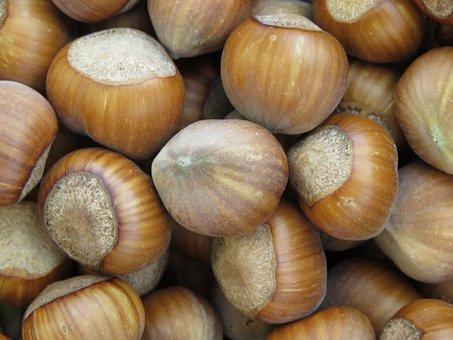 Hazelnut, Nuts, Legume, Healthy