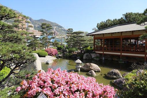 Nature, Tree, Body Of Water, Outdoor, Flower, Garden