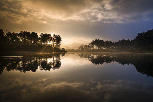 Soi Ball, The Lake, Pine Forest, Fanciful, Magic, Nice