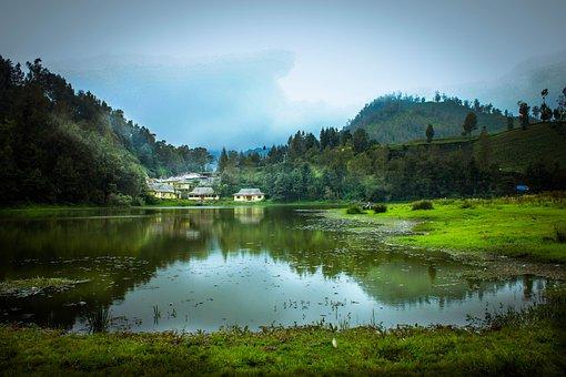 Lumajang, Lake, Indonesian, The Landscape, Swamp, View