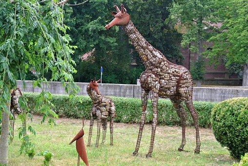 Nature, Summer, Tree, Grass, Garden, Park, Wood