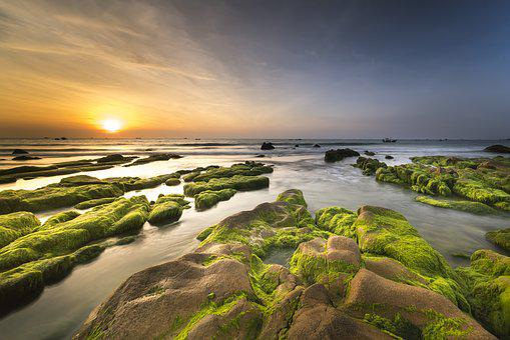 Coast, Moss, Province, Co Thach, The Sea, The Beach