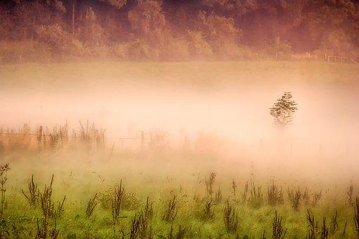 Landscape, Nature, Sunrise, Dawn, Fog, Mist, Morning