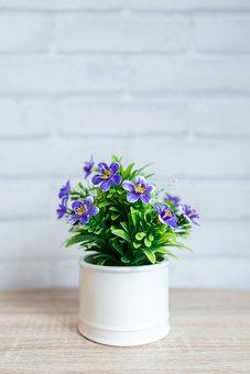 Flower, Nature, Flora, Vase, Leaf, Pot, Cluster