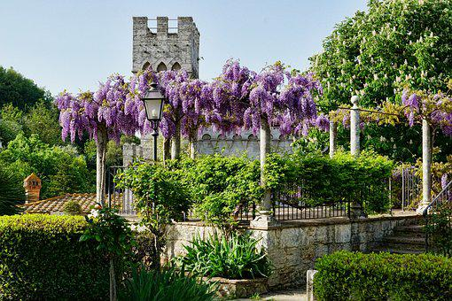 Tuscany, Garden, Flower, Architecture, Blue Rain