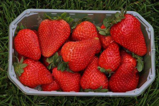 Strawberries, Red, Basket, Fruit, Eating, Healthy