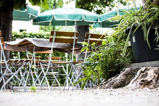 Summer, Plant, Nature, Garden, Wood, Beer Garden, Chair
