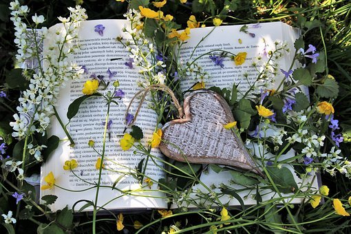 Relaxation, Spring, Reading, Heart, Paper, Plant