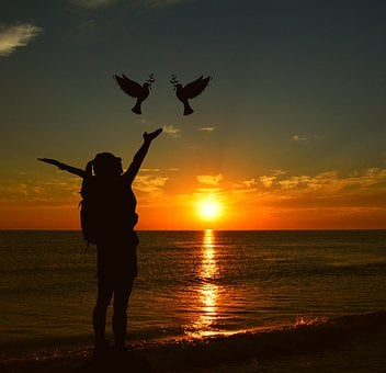Sunset, Sun, Dusk, Dawn, Evening, Silhouette, Waters