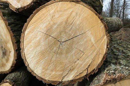 Wood, Firewood, Bark
