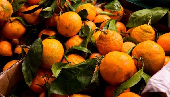 Fruit, Food, Citrus, Confection, Healthy, Orange