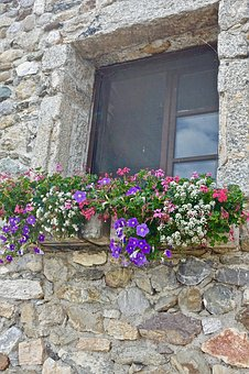 Flowers, House, Stone, Wall, Flora, Window, Exterior