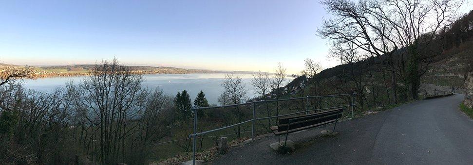 Panorama, Nature, Winter, Tree, Landscape, Lake Biel
