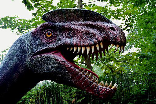 Dinosaur, Dino, Dino-park, Replica, Hagbard, Predator