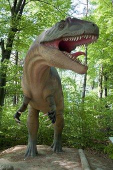 Nature, Wood, Dinosaur, Reptile, Outdoors, Animal