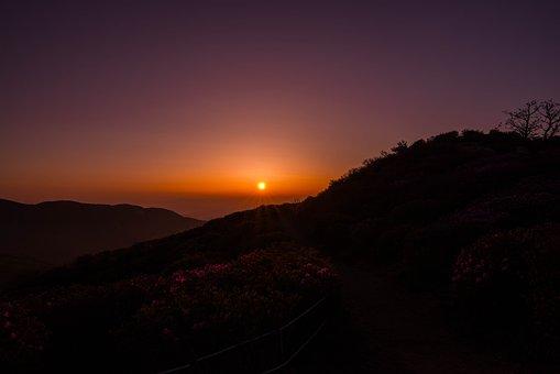 Sunset, Dawn, Scenery, Sea, Mountain, Flowers