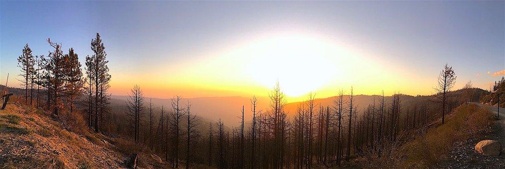 Panoramic, Sunset, Landscape, Nature, Trees, Sky, Dusk
