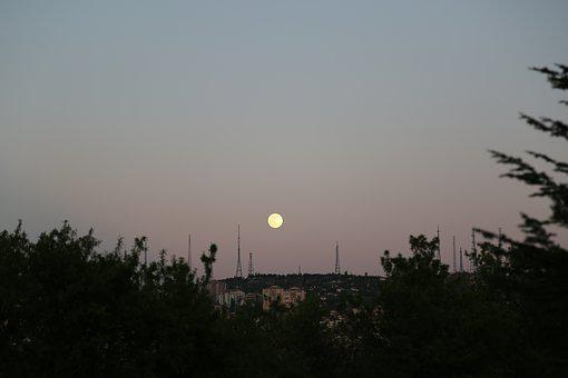 Month, Moon Rising, In The Evening, Horizon, Dawn, Sky