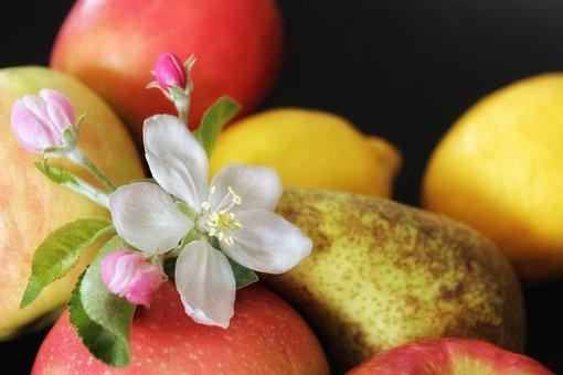 Apple, Fruit, Apple Blossom, Food, Healthy, Fresh