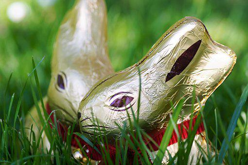 Chocolate, Bunny Girl, Easter, The Tradition Of, Golden