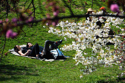 New York City, Central Park, Relaxation, Sunbathing