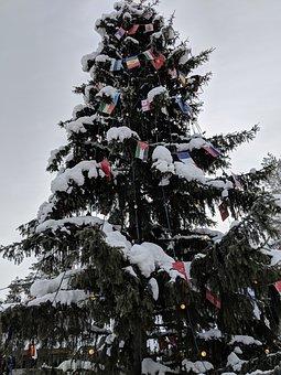 Winter, Snow, Tree, Christmas, Santa Claus Village
