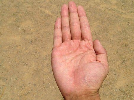 Palm, Hand, Finger, Bleaching, Palm Reading, Young