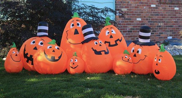 Halloween Background, Halloween Decor, Pumpkin Patch