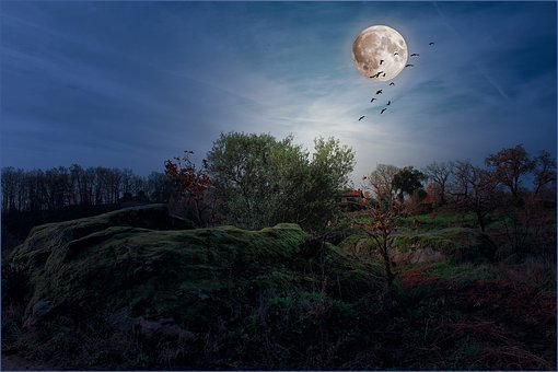 Landscapes, Moon, Night, Full Moon, Sky, Sky And Moon