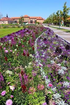 Landesgartenschau Landau, Plant, Flowers, Trees