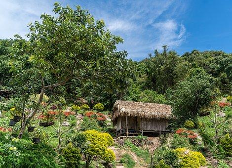 Chiang Mai, Thailand, Grass Hut, Architecture, Nature