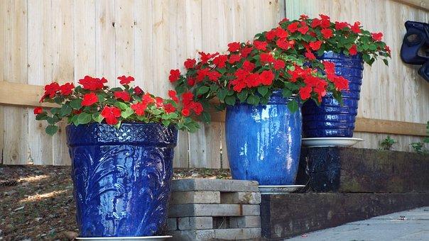 Geraniums, Red, Flowers, Blue, Pots, Pottery, Plant