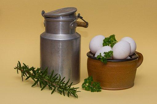 Milk, Egg, Eat, Scrambled Eggs, Food, Cook, Kitchen