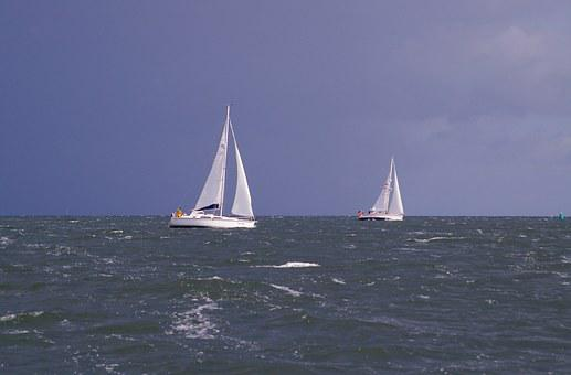 Sailing Vessel, Sail, Ship, Sea, Water Sports, Regatta