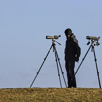 Spotting Scope, Ornithologist, Bird Watching, Nature