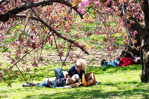 New York City, Central Park, Relaxation, Couple