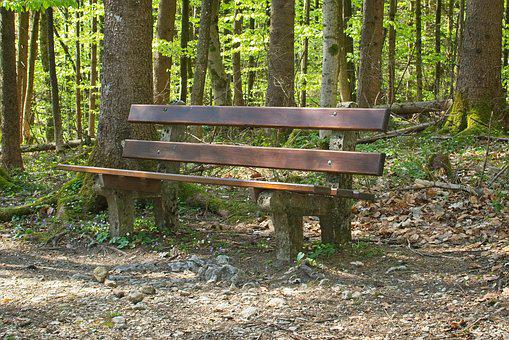 Bench, Resting Place, Forest, Bank, Idyll, Rest, Seat