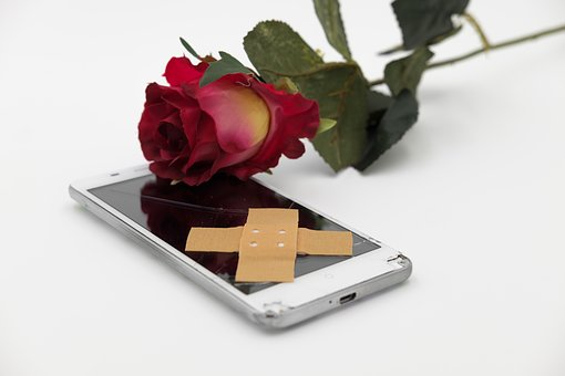 Patch, Association, Rose, Flower, Blossom, Bloom