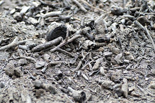 Ash, Scorch, After The Fire, Charred