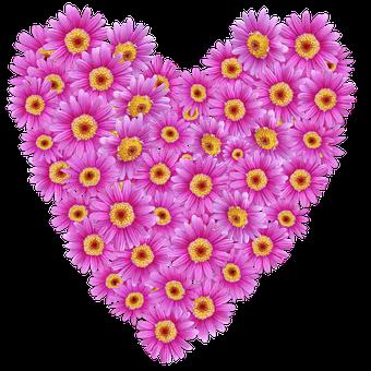 Daisies, Heart, Valentine, Romantic, Floral