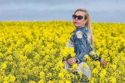 Field, Nature, Flower, Hayfield, Oilseed