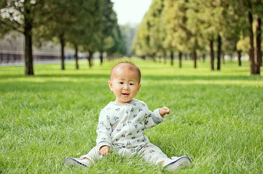 Lawn, Nature, Child, Summer, Park, Hay To, Outdoor