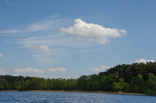 Cloud, Cumulus, Cirrus, Nature, Waters, Lake, Tree