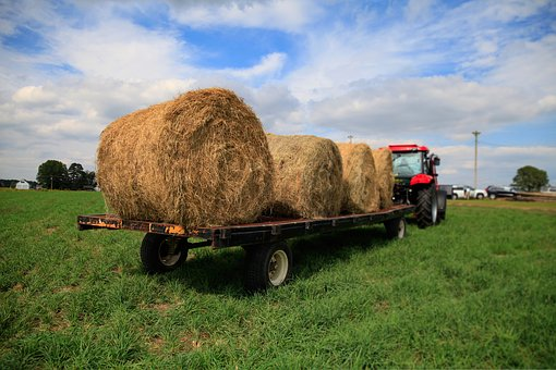 Tractor, Vale, Hay, Carrying, S, Grass, Farm