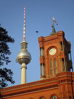 Tv Tower, Red Town Hall, Clock, Berlin, Bird, Capital