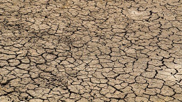 Lack Of Rain, Dry Season, Parched, Drought, Desert, Dry