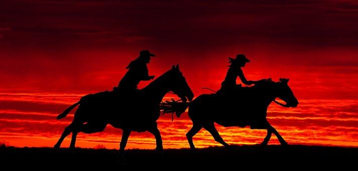 Cavalry, Sunset, Cut, Mammal, Evening, Twilight