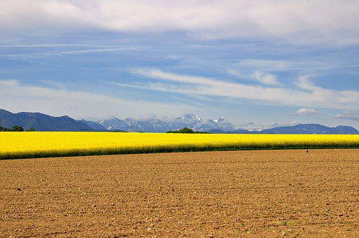 Landscape, Nature, Field, Contrast, Brown, Yellow, Blue